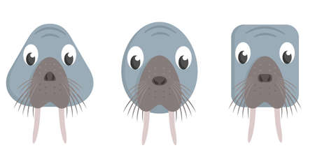 Set of cartoon walruses. Different shapes of animal faces.