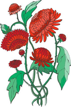 chinoiserie: red chrysanthemums in chinoiserie style for wallpaper, wedding, textile and scrapbooking design