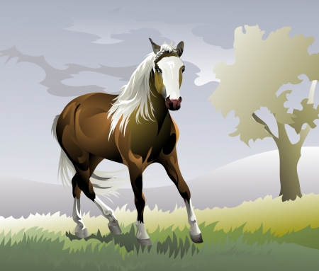paintings: horse pony rides on the road Illustration
