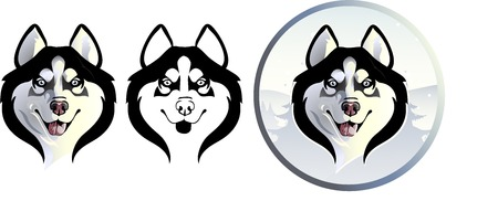 dog sled: Siberian Husky options Illustration