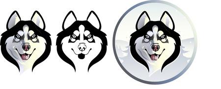 Siberian Husky options Illusztráció