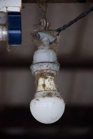dusty: Old dusty light bulb in power off.