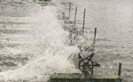 hatchery: Water aeration turbine in farming aquatic. Shrimp and fish hatchery business in Thailand.