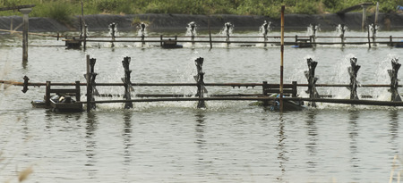 aeration: Water aeration turbine in farming aquatic. Shrimp and fish hatchery business in Thailand.