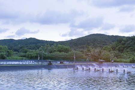 農業水産水通気タービン。タイでエビや魚の放流事業。