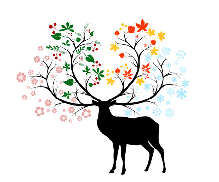 seasons photo
