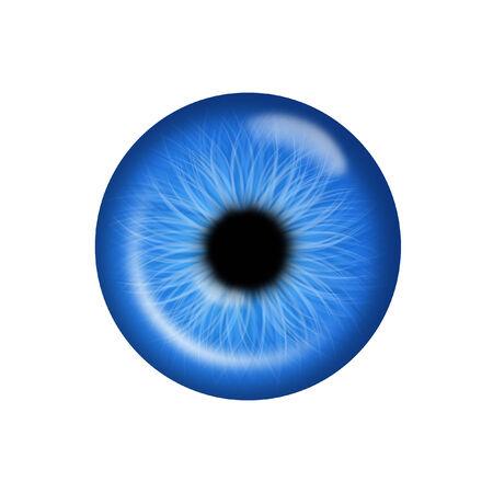 ojo azul: Blue Eye Vectores