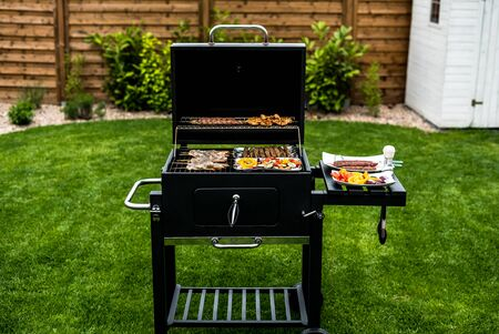 Barbecue grill party. Tasty Fresh food. Shrimps spit and Beef rolls with bio young spices, chicken strips. bio vegetables