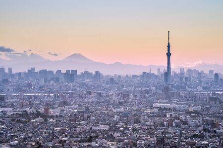 東京スカイツリーと富士山の背景に