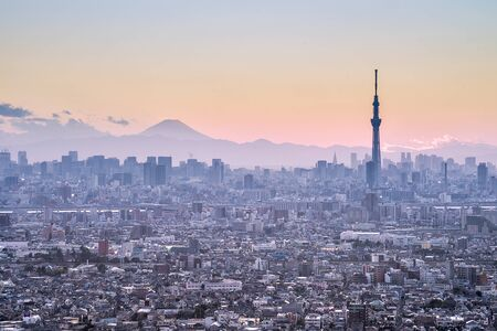 Tokyo SkyTree and Mt Fuji on the background