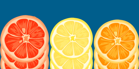 Citrus slices of lemon, orange, lime and grapefruit. Vector illustration Illustration