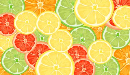 Citrus slices of lemon, orange, lime and grapefruit. Vector illustration Hình minh hoạ