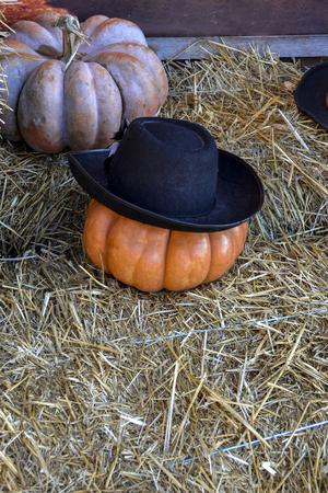Red pumpkin alone in the hay in a cowboy hat, Halloween concept, autumn still life in orange shades 版權商用圖片