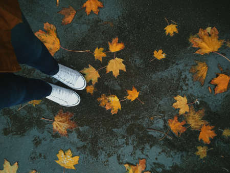 Girl with jeans and white sneakers stands in the autumn in yellow leaves