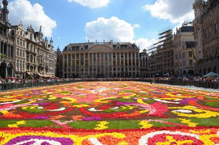 BRUSSELS - AUGUST 16  Flower carpet - 2008 in Brussels Grand-Place, Belgium  This year the carpet was made from begonia flowers
