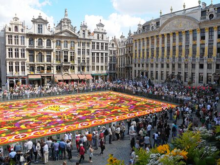 Flower carpet - 2008 in Brussels