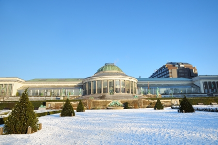 Botanique park in center of Brussels in winter