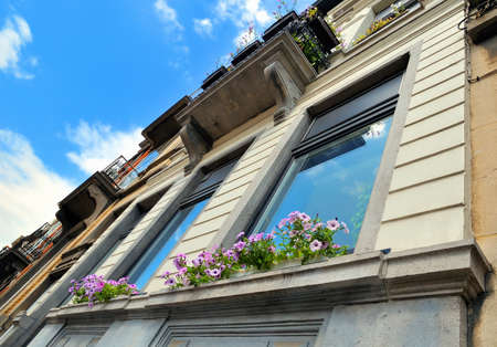 Angle view of a house with sky reflecting in windows and petunia flowers