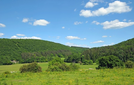wallonie: Typical natural landscape in Walloon, province Liege in Belgium in a calm day