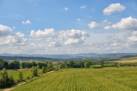 massif: Agricultural landscape of Auvergne region in Massif Central of France in bright autumn day Stock Photo