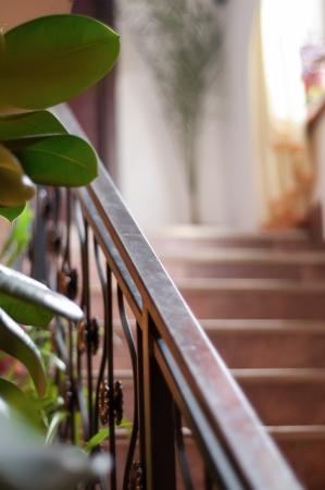 Wrought iron railing photo