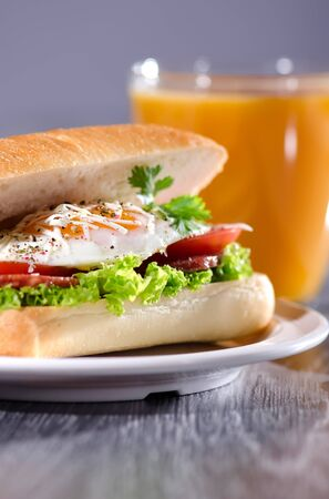 Fresh and tasty sandwich with organic egg photo