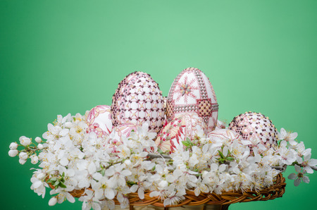 Basket with easter wax painted eggs and plum cherry flowers against green background   photo