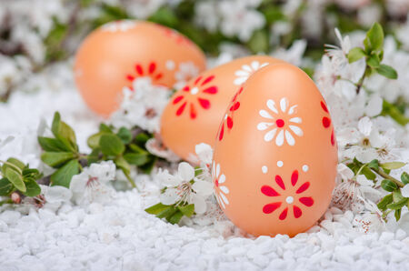 Painted eggs on white  surface with plum cherry flowers Stock Photo - 27145207