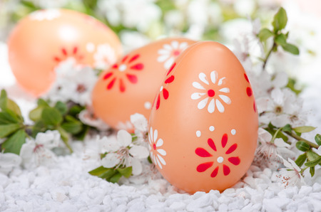 Painted eggs on white  surface with plum cherry flowers Stock Photo - 27145210