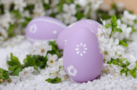 Painted eggs on white  surface with plum cherry flowers Stock Photo - 27145211