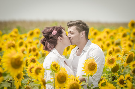 Beautiful couple kissing  in a sunflower field under the summer sun photo