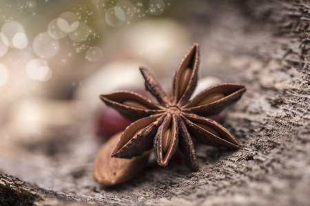 Star anise over a wooden surface and nuts photo