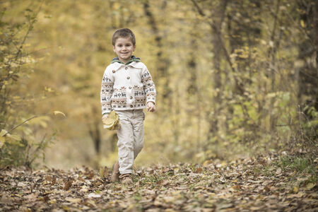 ��beautiful boy�: Beautiful  boy playing in a forest in autumn time Stock Photo