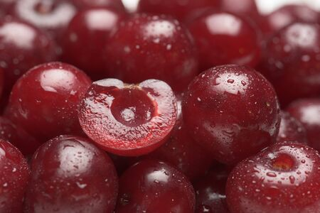 sour cherry: Sour cherry fruits close-up with dewdrops
