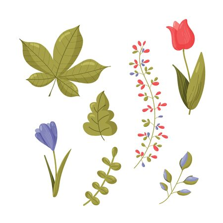 Spring set.Collection of popular floristic flowers and plants isolated on white background. Botanical colorful hand drawn vector illustration in flat cartoon style. Ilustracja