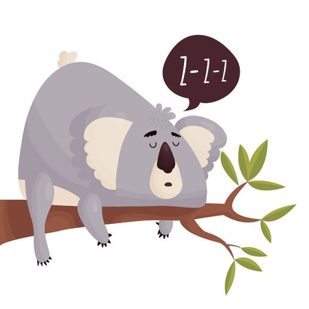 Cute fat lazy Koala on a tree branch. Vector cute animal in cartoon style .