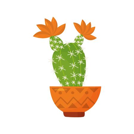 blooming house plant on a white background. Vector cactus