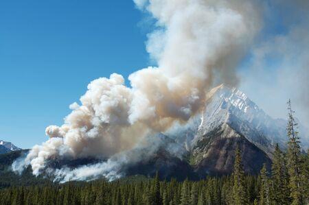 forest fire: Large forest fire burning in the Rocky Mountains