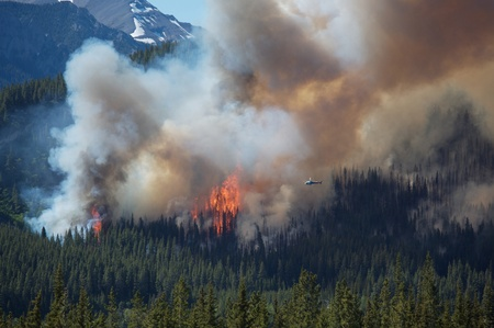 Helicopter in the vicinty of large forest fire Stock Photo