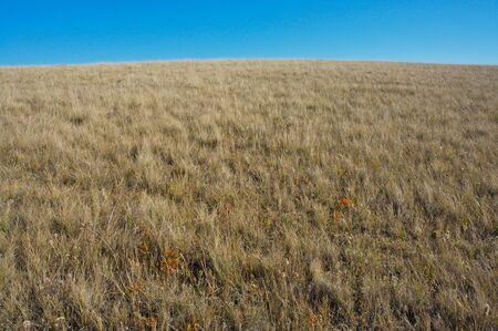 Small hill in prairie landscape Stock Photo