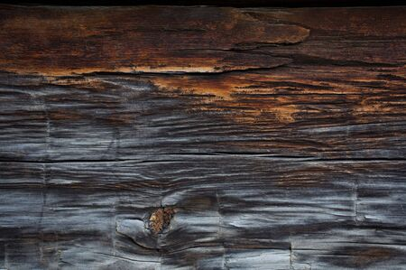 Detail of old wood texture on the wall of a log cabin