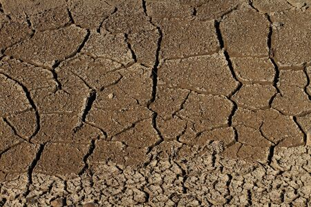 parched: Cracked and parched dry earth
