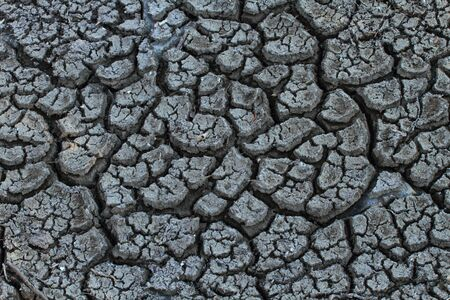Cracked and parched dry earth