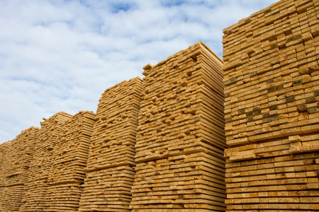 2x4 wood: Piles of stacked rough cut lumber at a sawmill