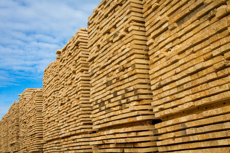 forest products: Stacked lumber at a sawmill