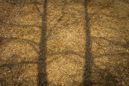 Large pile of wood chips at a plywood processing plant with tree shadows
