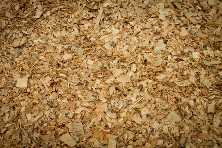 forest products: Wood chips at plywood processing plant Stock Photo