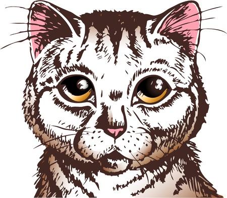 visage peint: pussycat avec de grands yeux jaunes regardant fixement vous