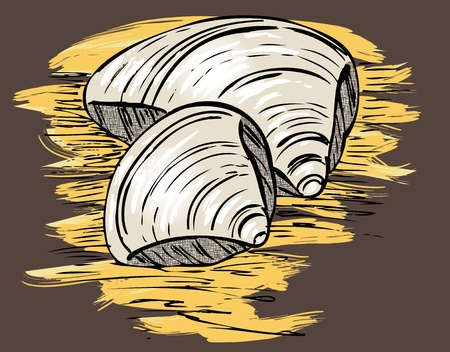 line drawings: colored sketch of two seashells on the sand in vintage style
