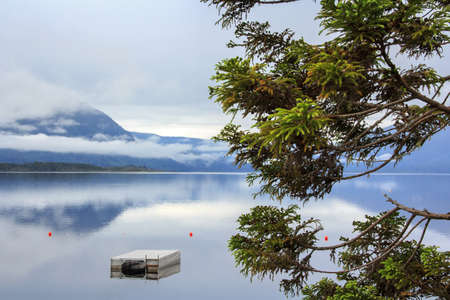 mountain blue lake lanscape with the morning mist at the background and a pine at the foreground Stock Photo